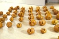 http://v1.rolandgebhardt.com/files/gimgs/th-78_Pumpkins.jpg